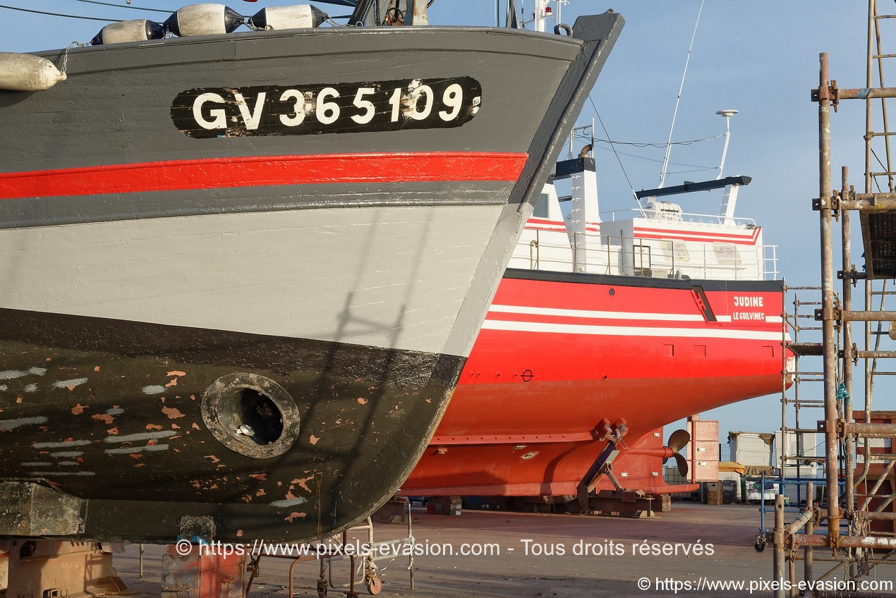 Judine (GV 424712) et La Sardane (GV 365109)