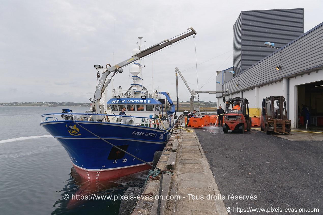 Ocean Venture II S 121 (Skibbereen)