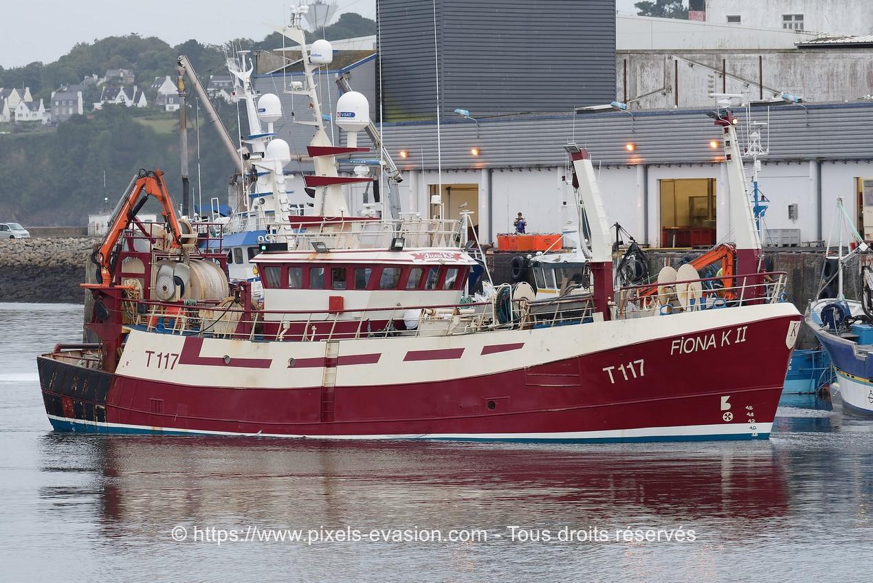 Fiona K II T117