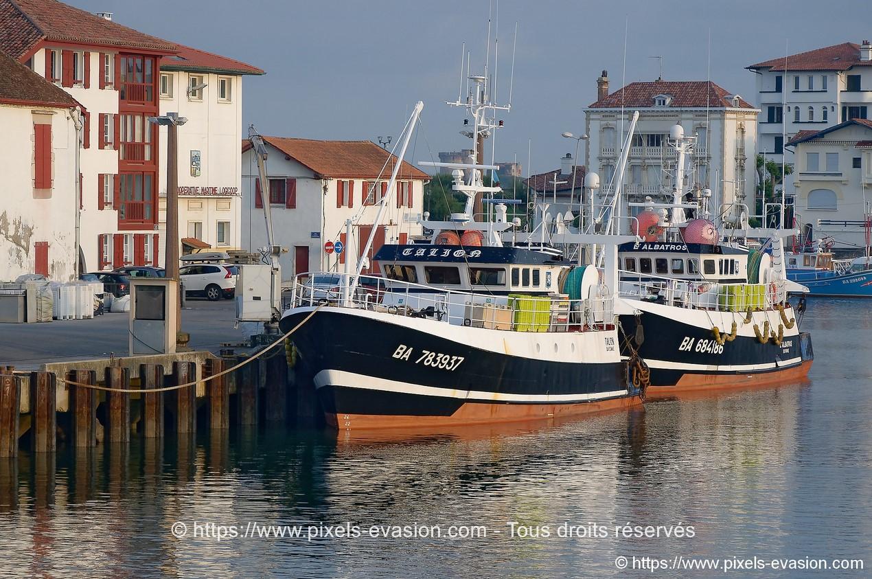 Talion (BA 783937) et L'Albatros (BA 684186)