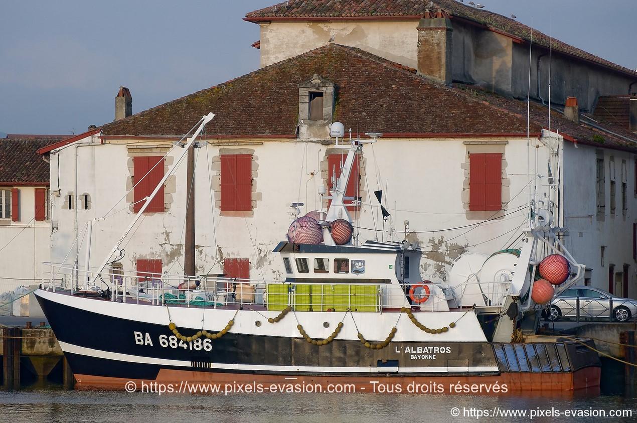 L'Albatros (BA 684186)