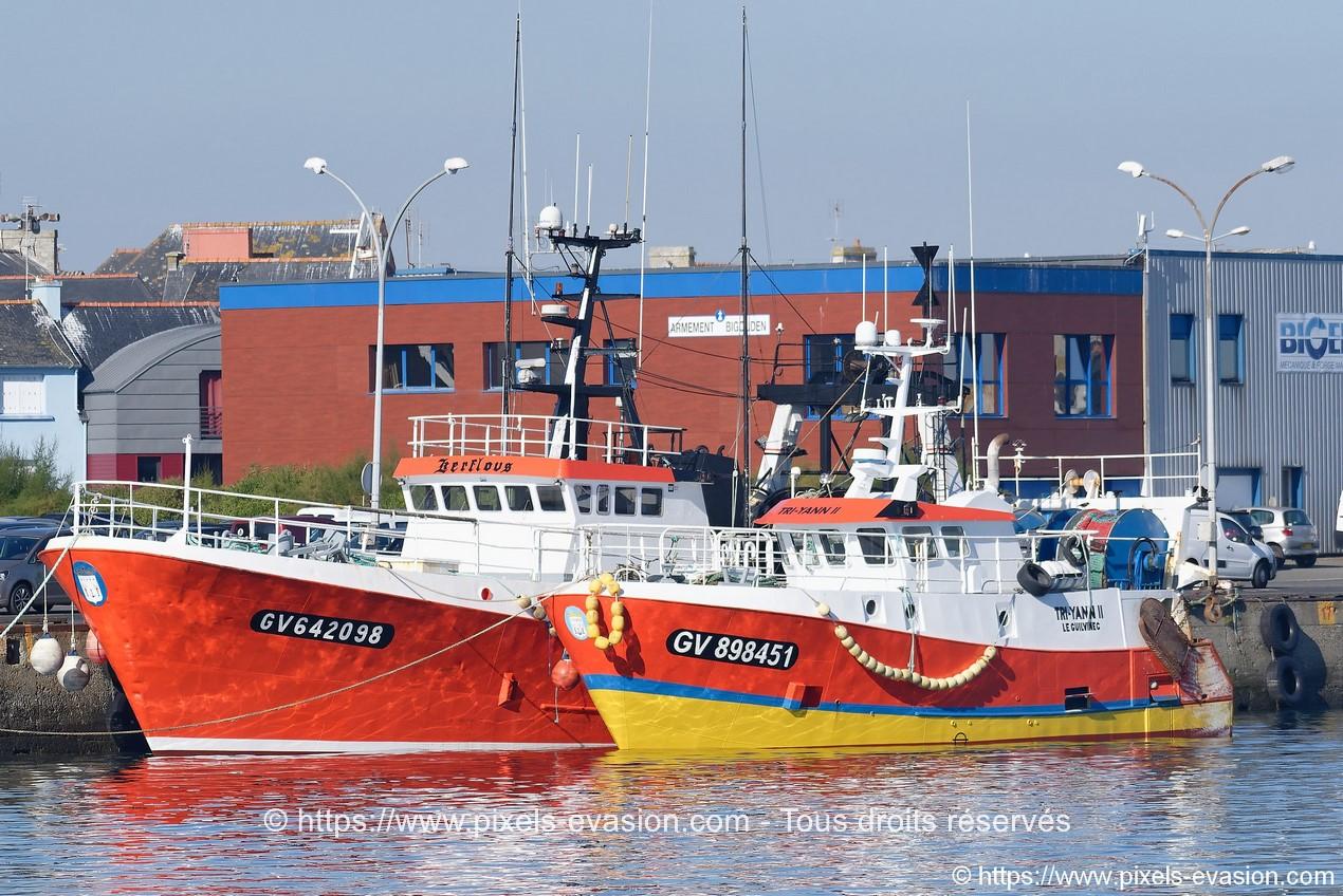 Tri Yann II (GV 898451) et Kerflous (GV 642098)