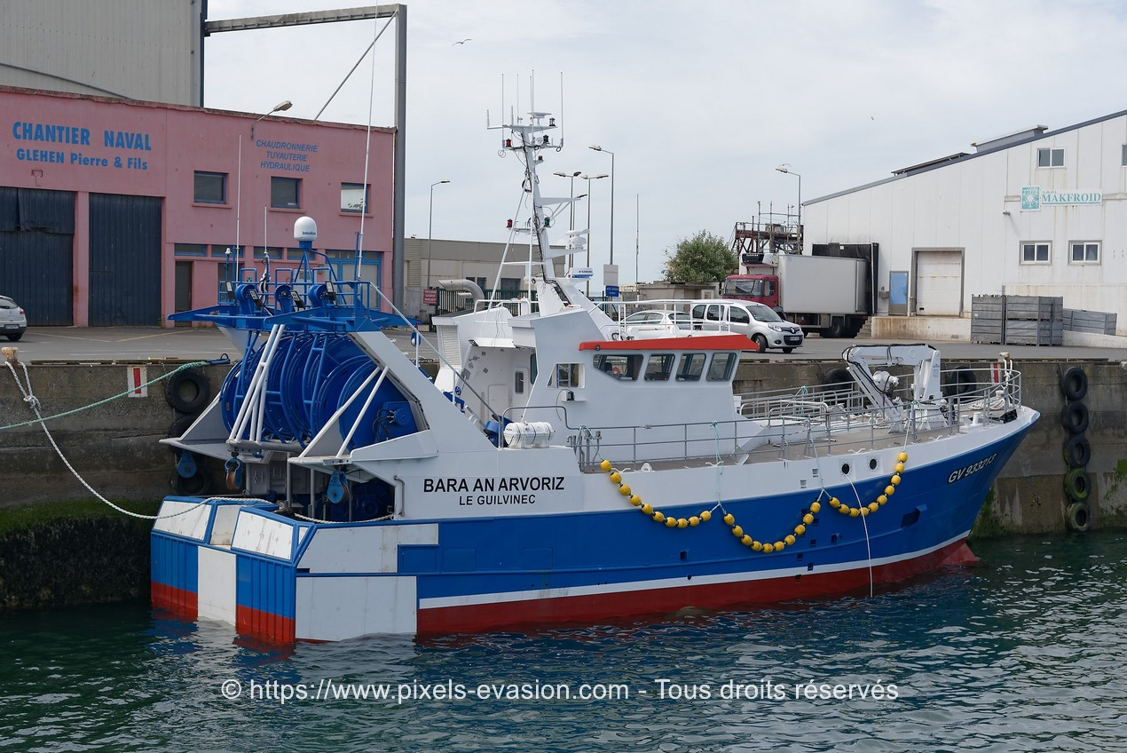 Bara An Arvoriz (GV 933213)