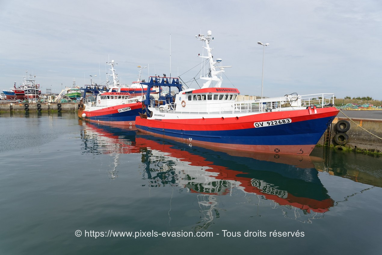 Bougainville (GV 922683) et La Perouse (GV 922678)