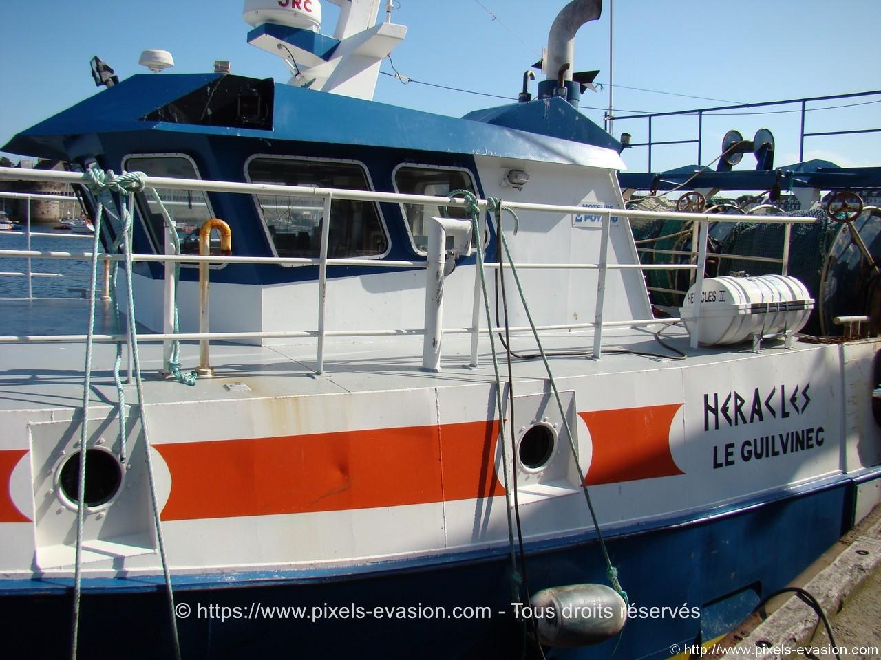Heracles II (GV 898445)