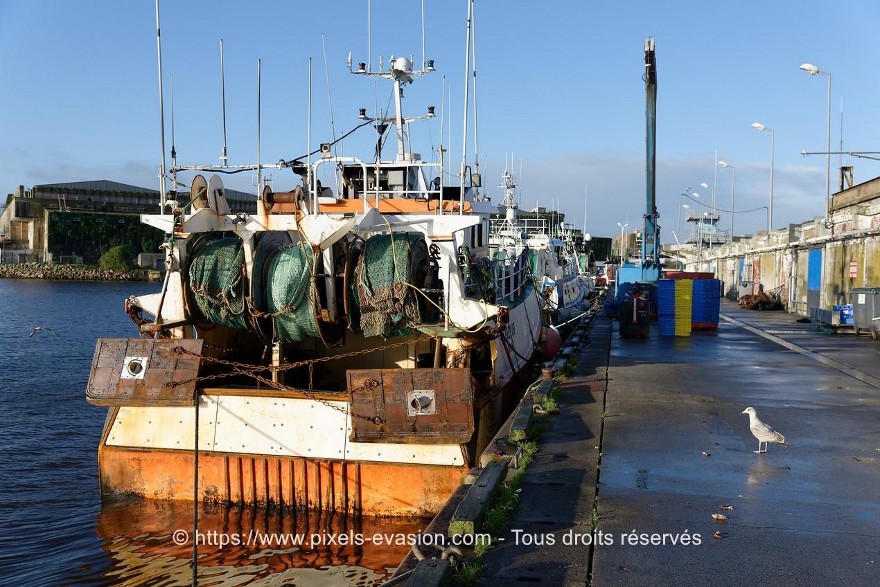 Le Belier (LO 899898)