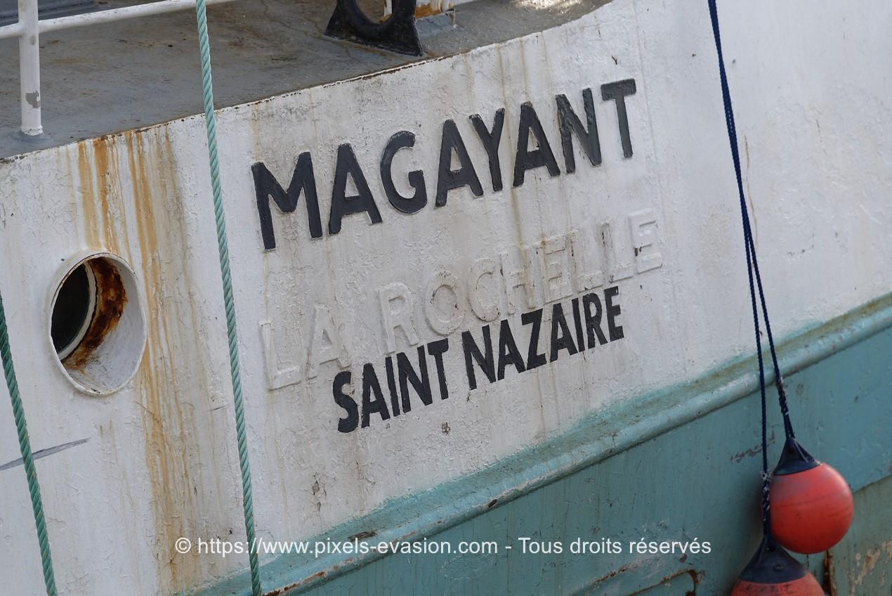 Magayant (SN 685785)
