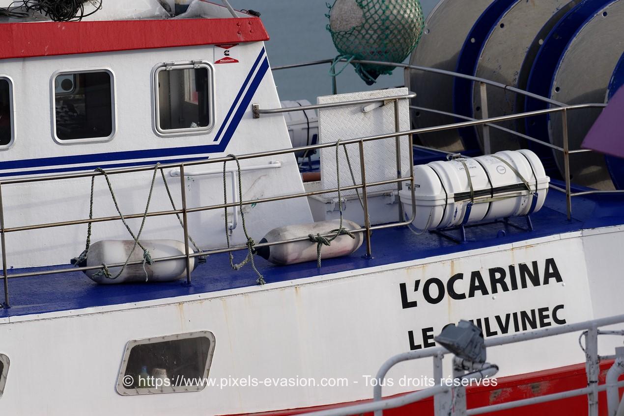 L'Ocarina (GV 730709)