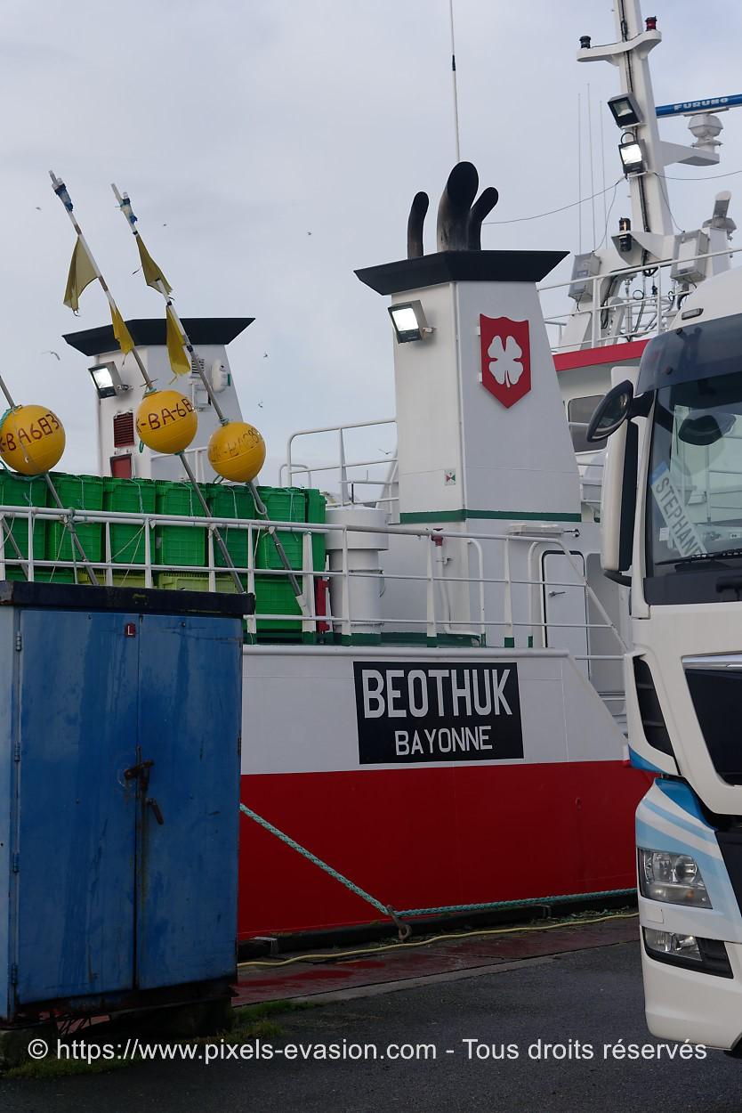 Beothuk BA 683096
