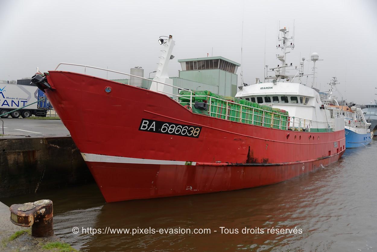 Ibardin BA 686638