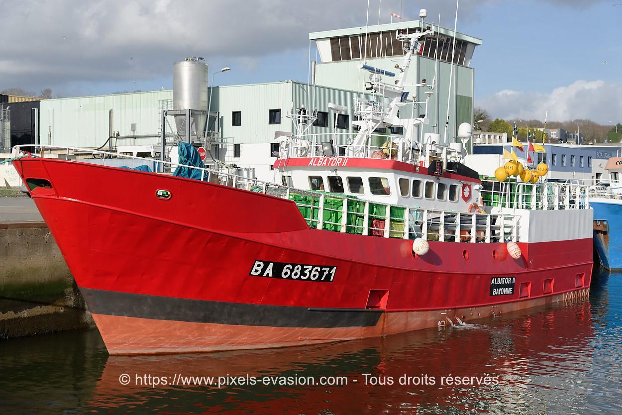 Albator II BA 683671