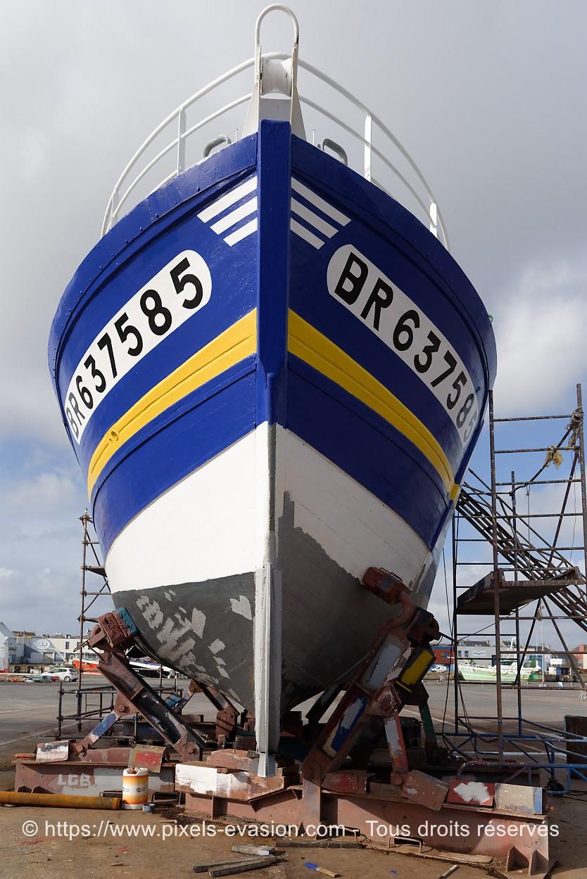 Etoile d'Arvor II BR 637585