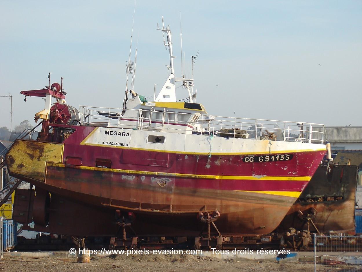 Megara CC 691135