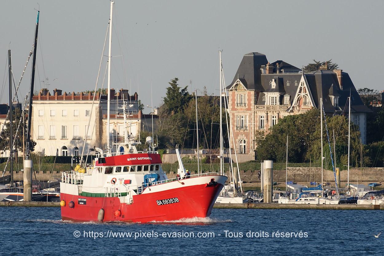 Saint Gothard BA 683638