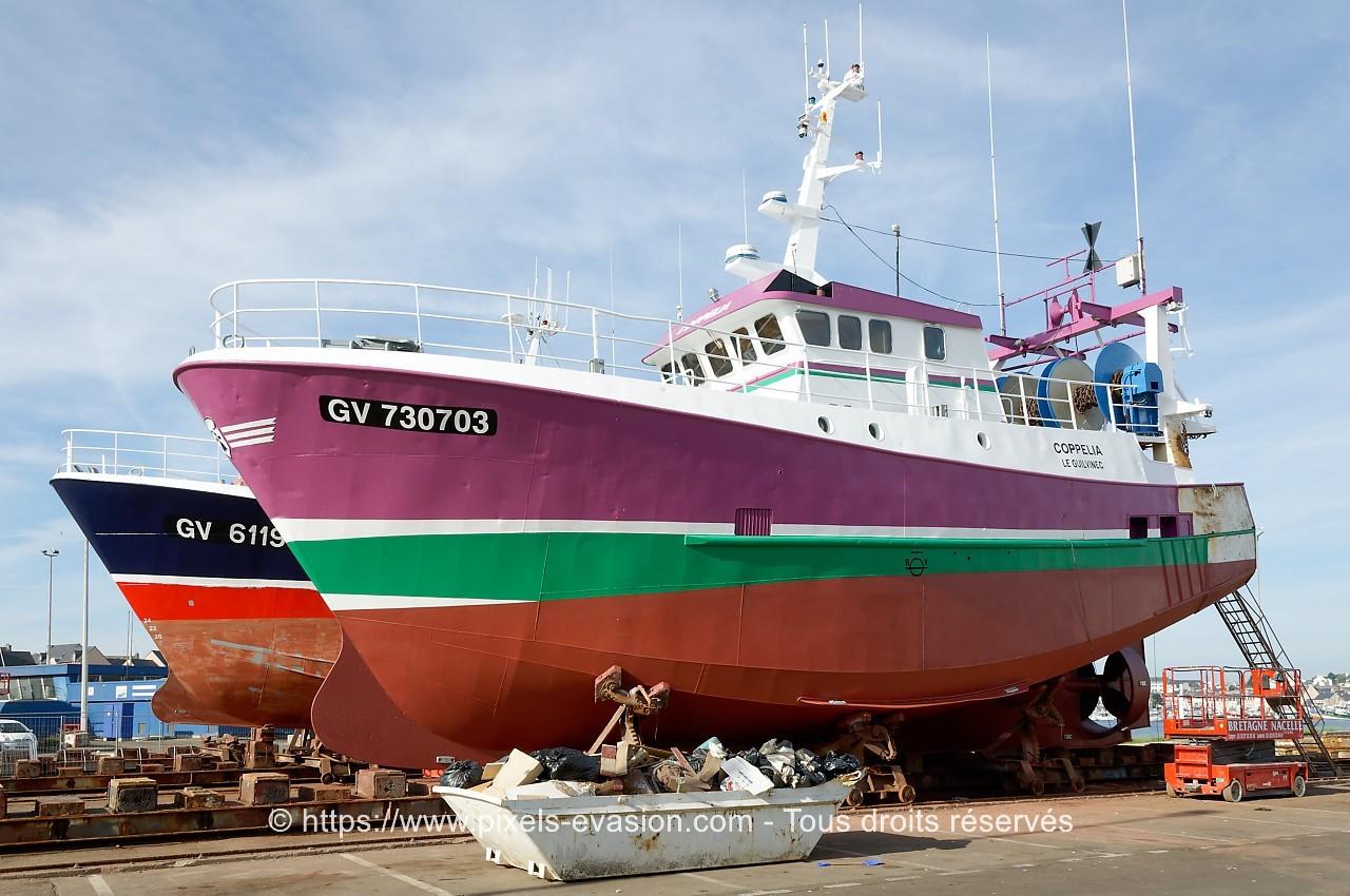 Coppelia GV 730703