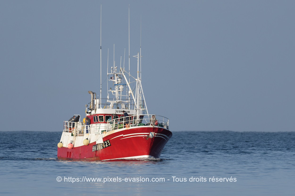 Espemar BA 462623