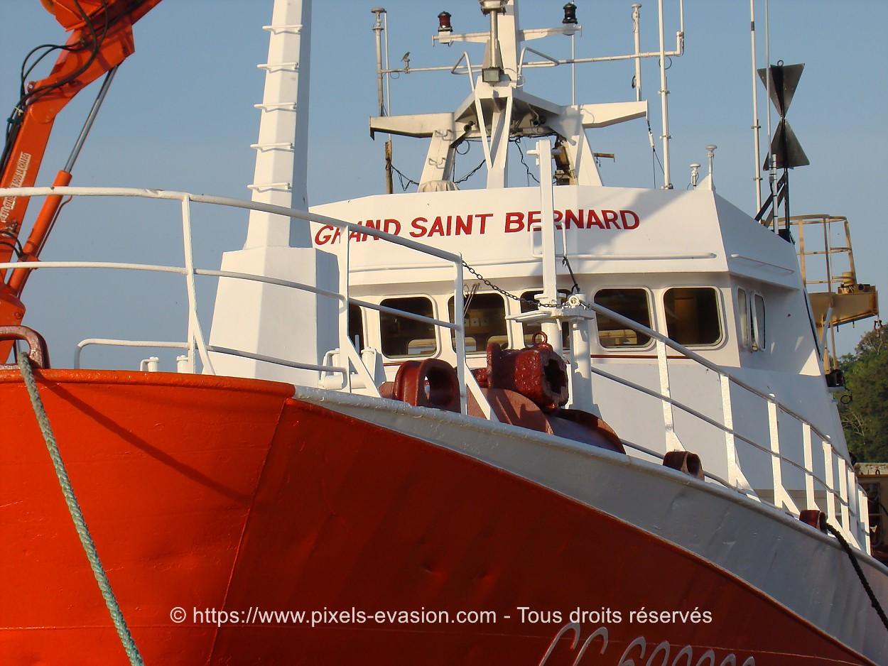 Grand Saint Bernard CC 683609