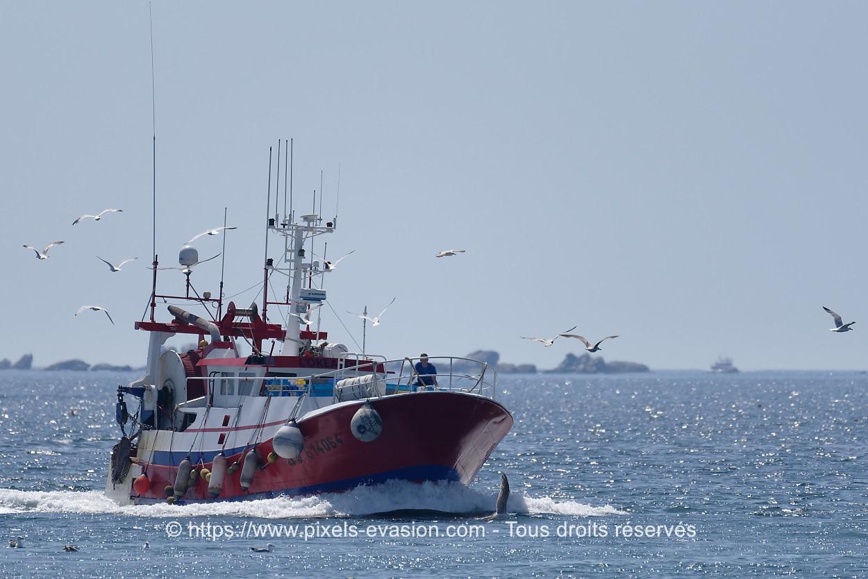 L'Okeanos GV 614064