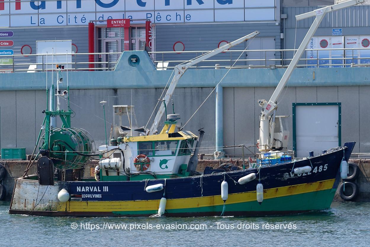 Narval III GV 622485