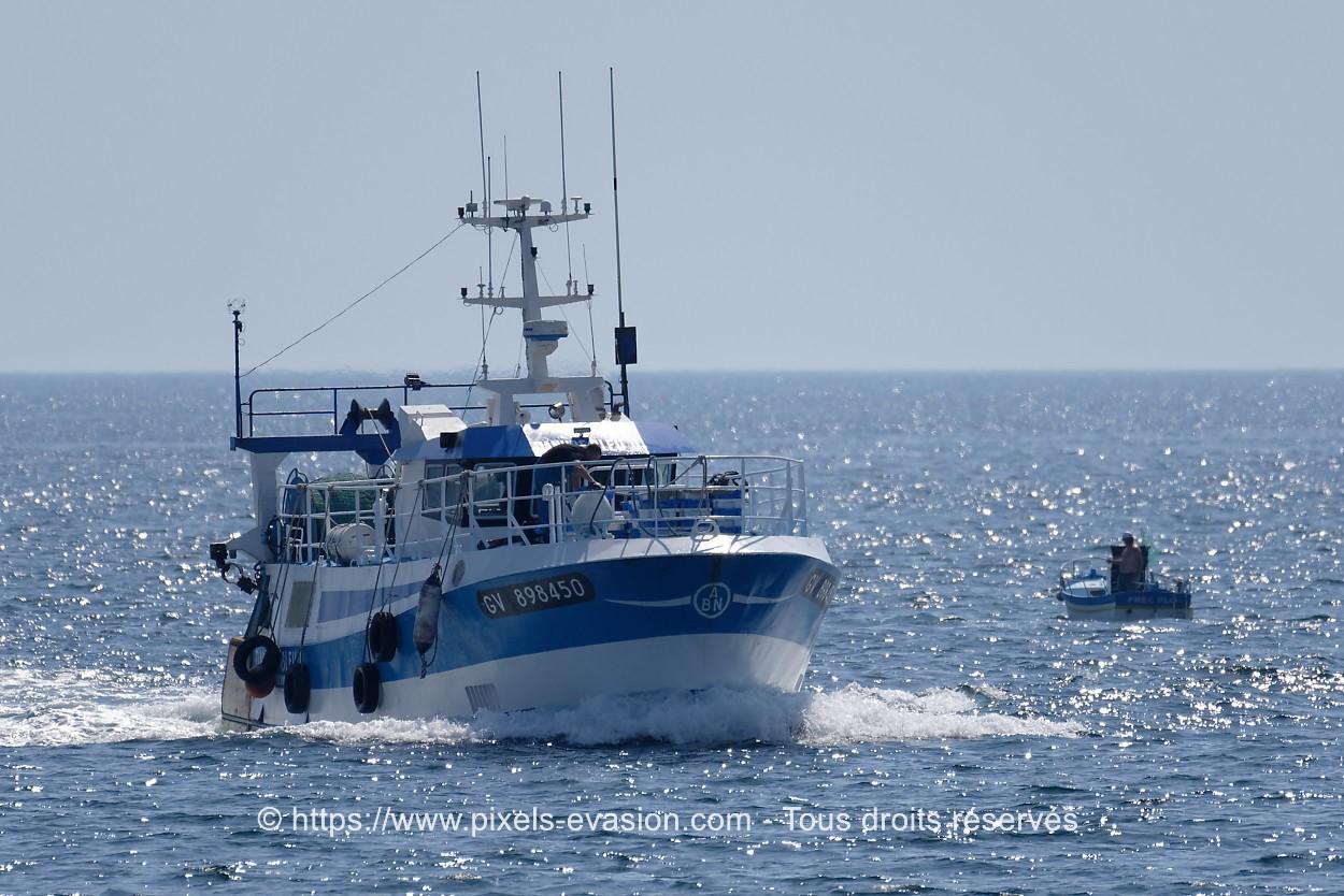 Danube Bleu II GV 898450
