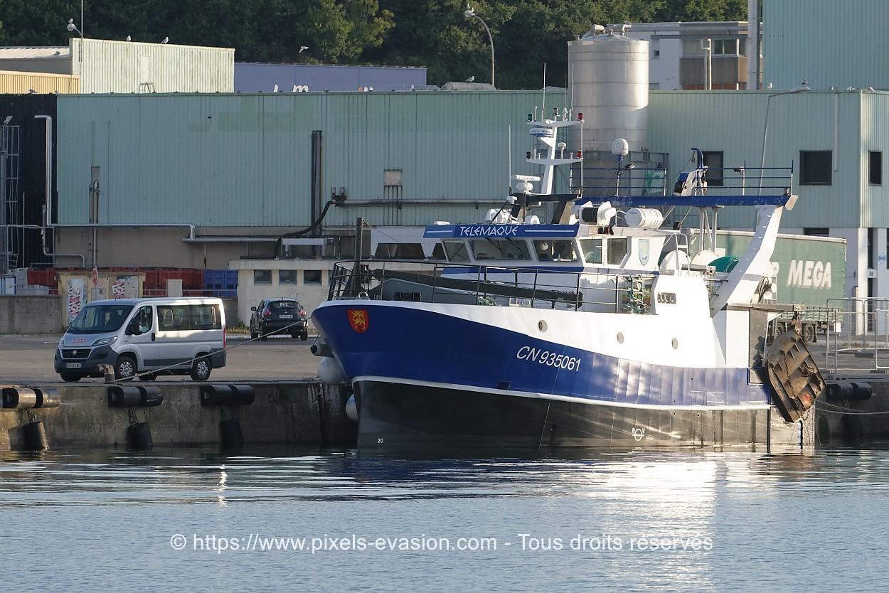 Télémaque CN 935061