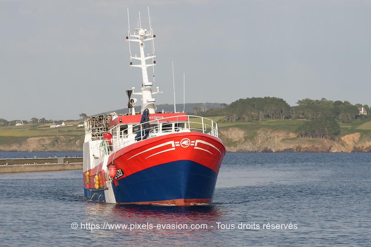 Zubernoa GV 724521