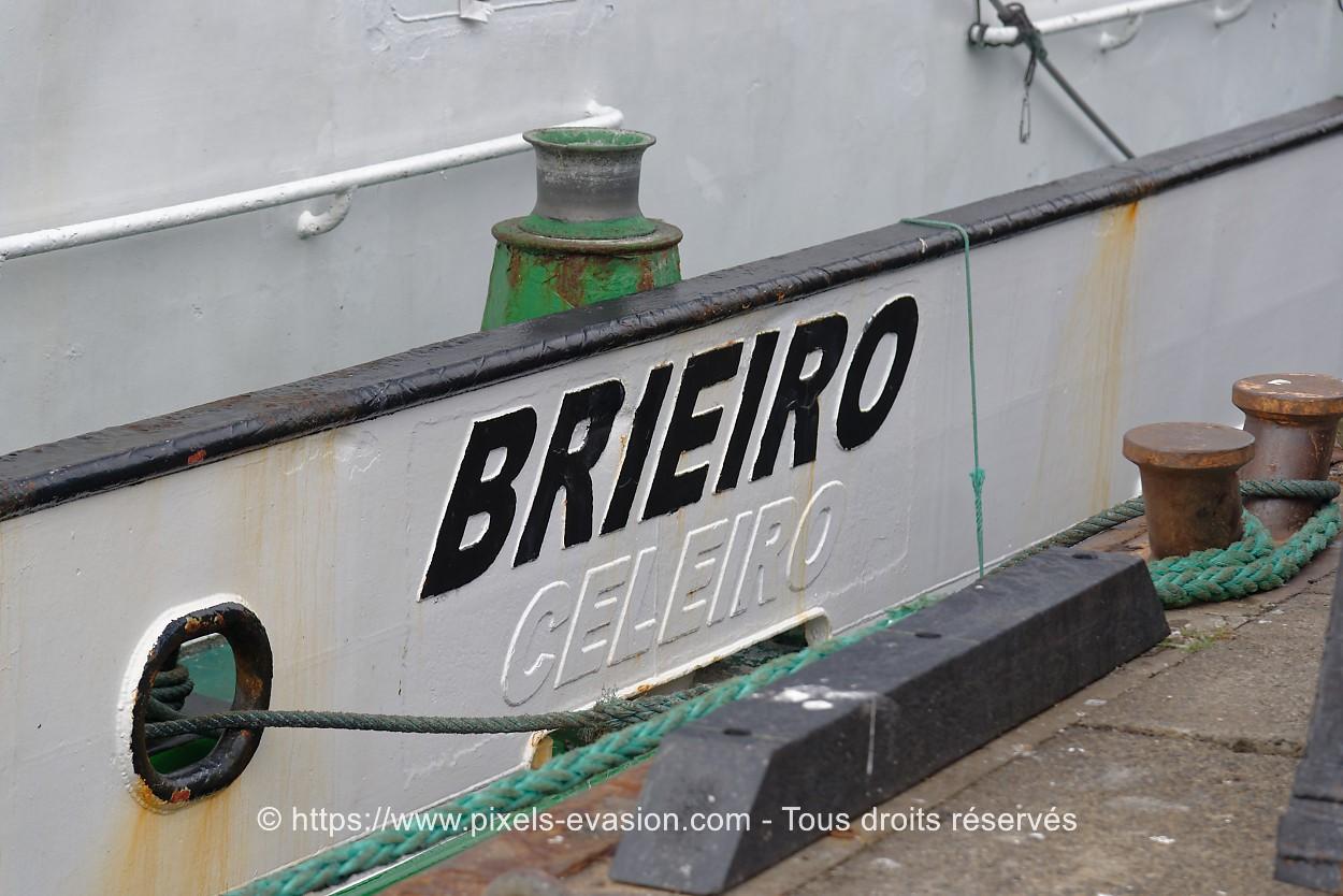 Brieiro