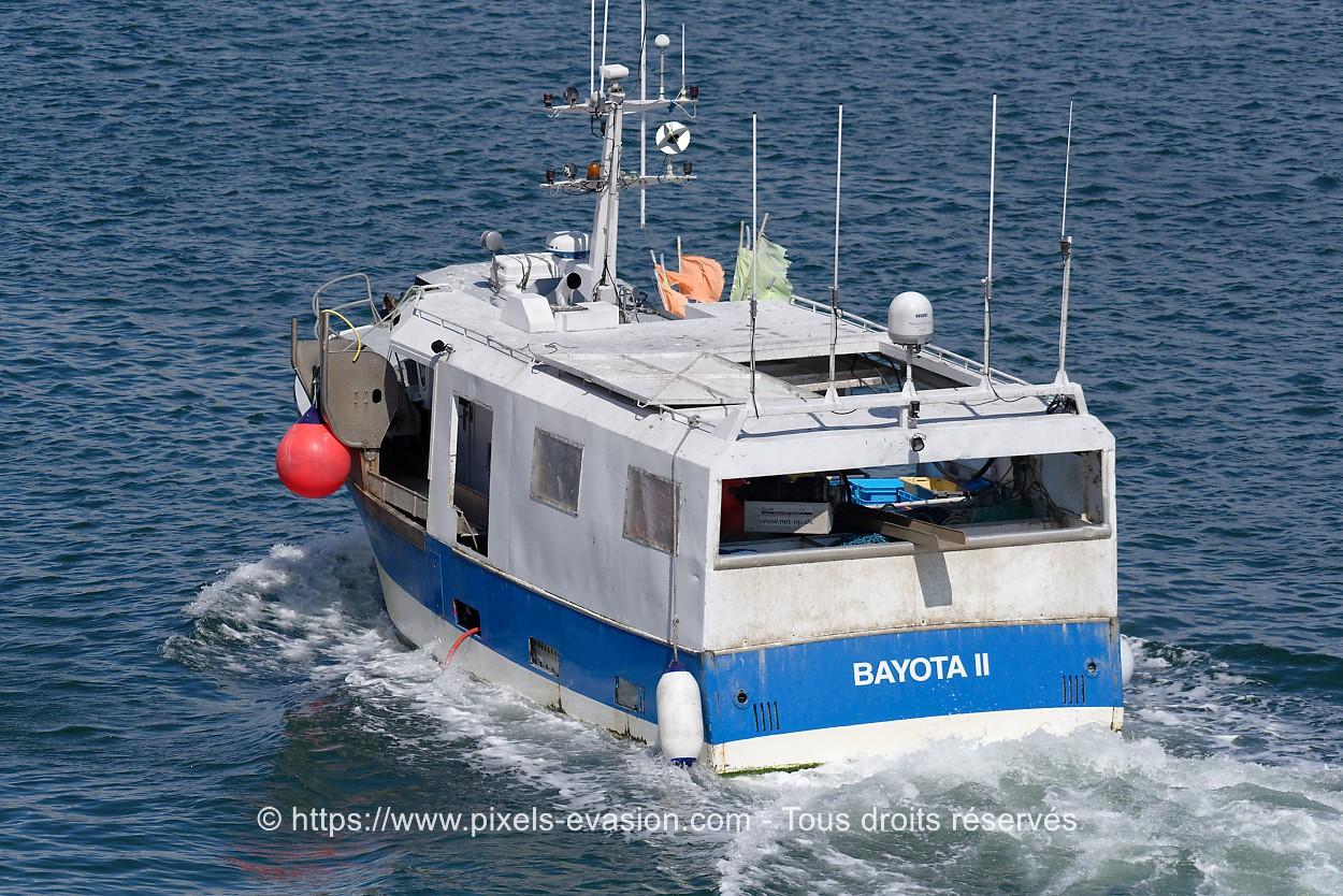 Bayota II CC 815511