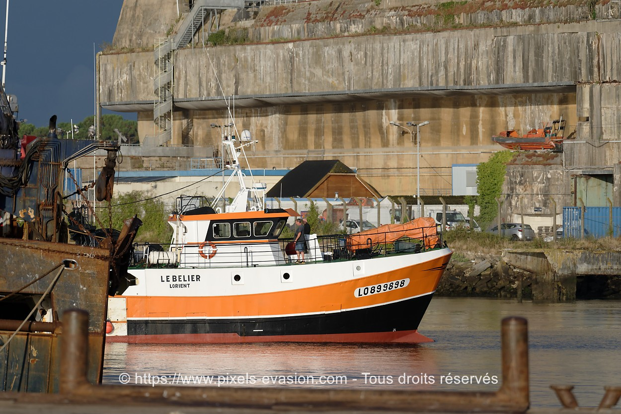 Le Belier LO 899898