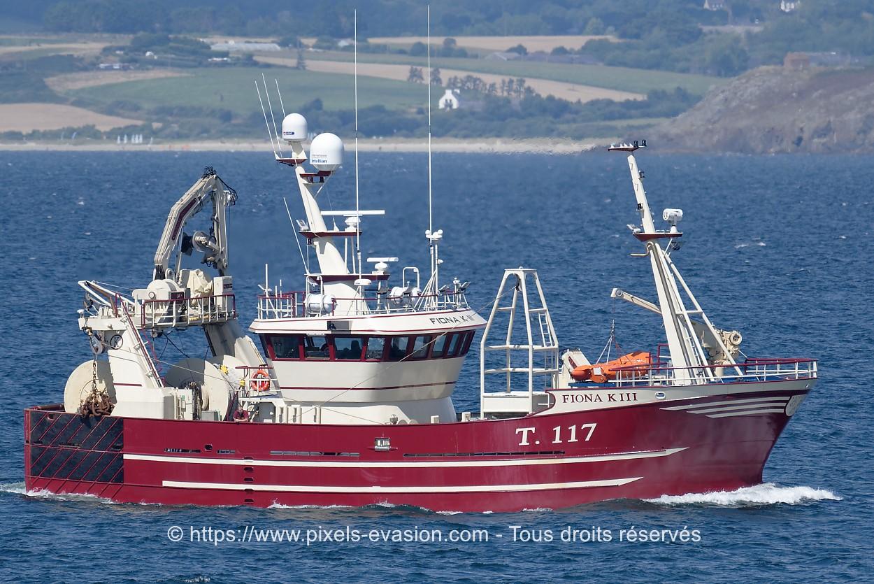 Fiona K III T.117