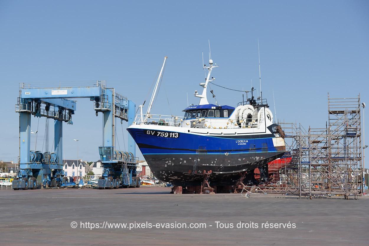 L'Ocelyja GV 759113