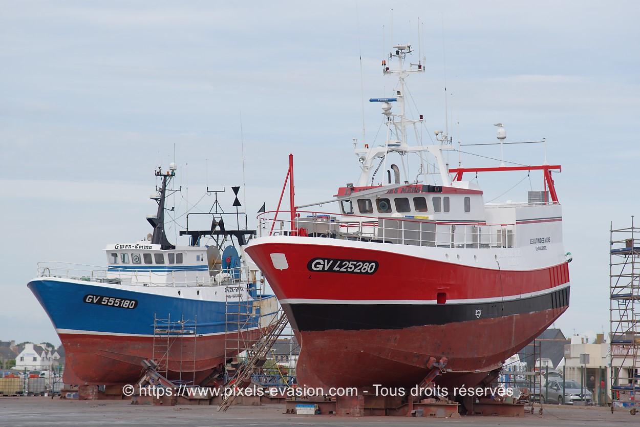 Le lutin des mers GV 425280