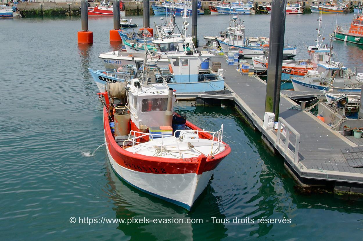 Le Stouic GV365122