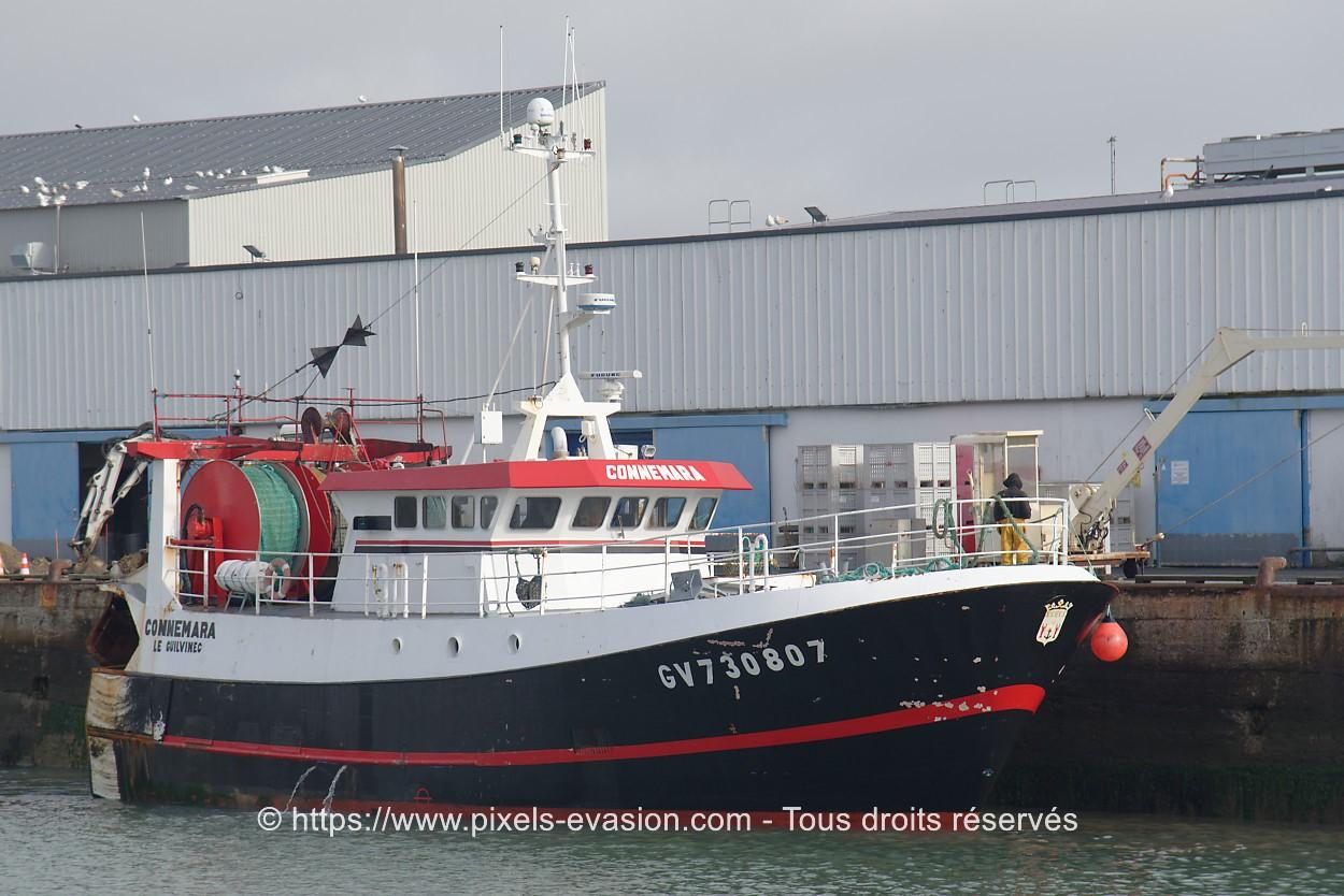 Connemara GV 730807