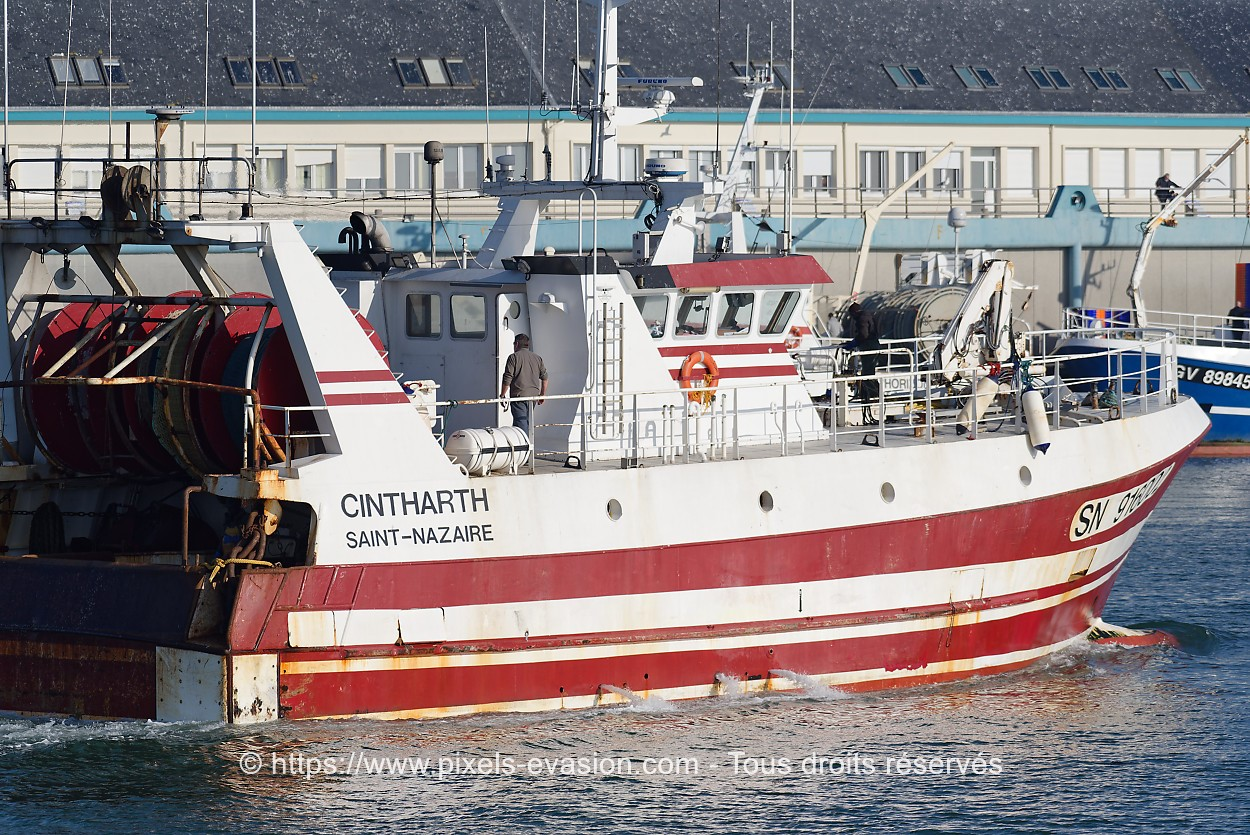 Cintharth SN 916002
