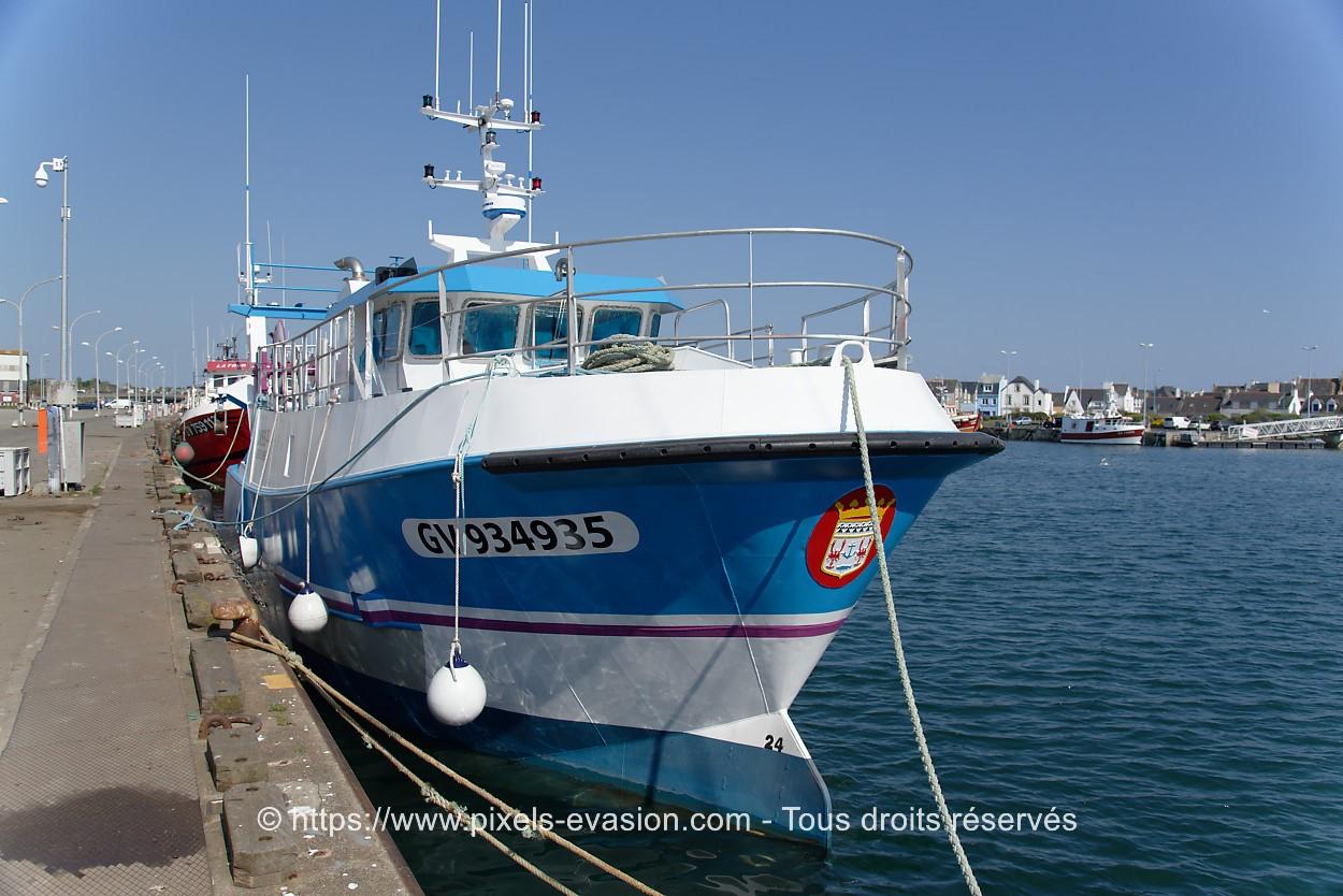 Oasis II GV 934935