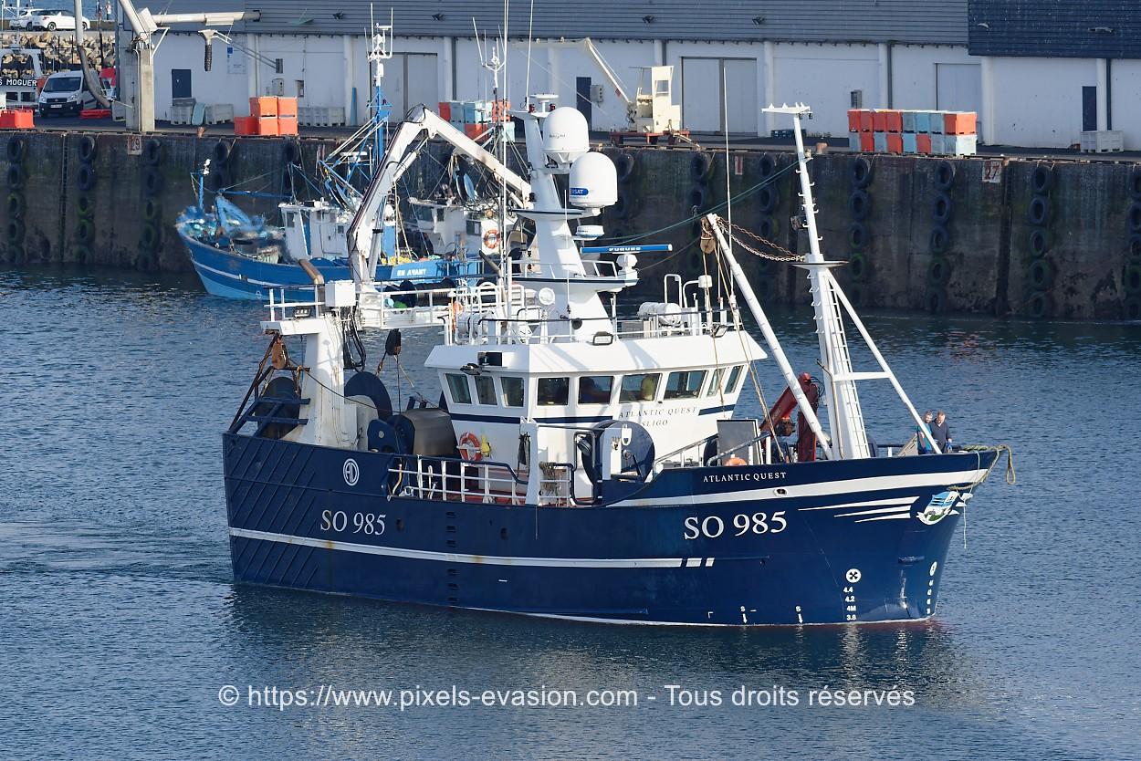 Atlantic Quest SO985