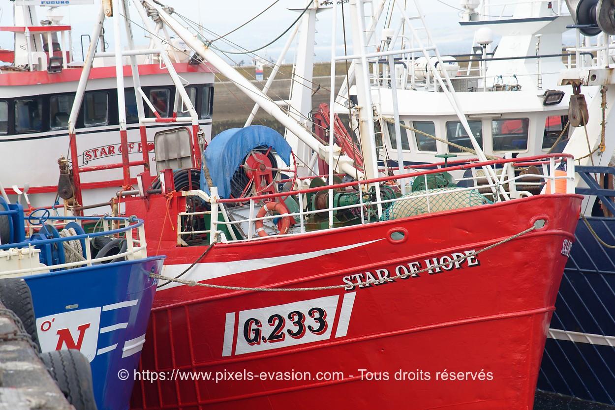 Star of Hope G.233