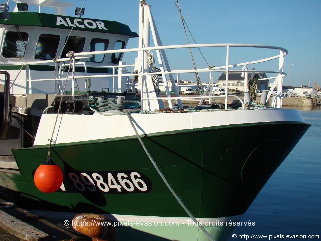 Alcor GV 898466
