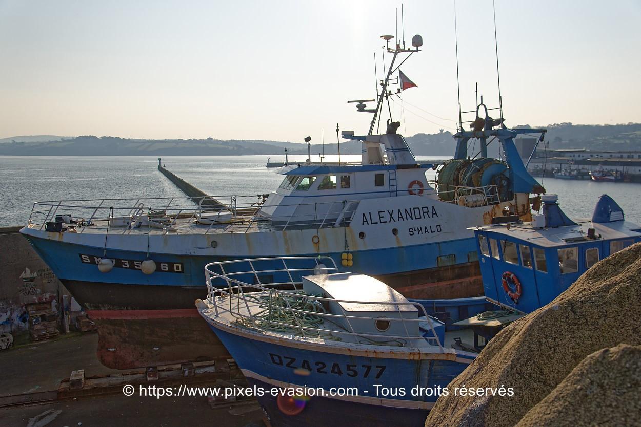 Alexandra SM 735960