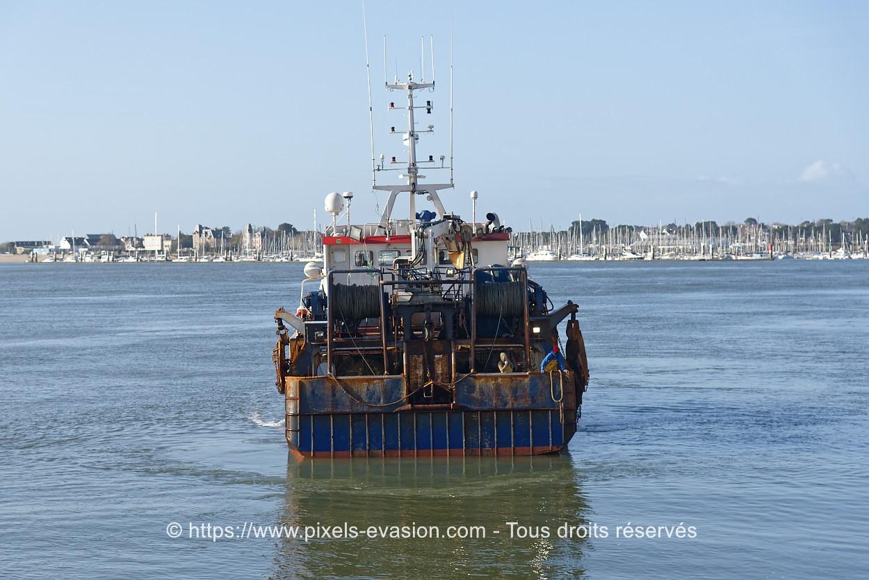 Julien Coleou LO 911288