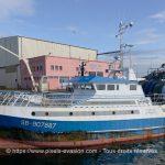 Erispoë SB 907887