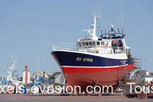 Le Balbuzard II GV 611916