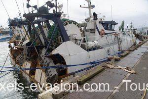 Magellan II GV 899961