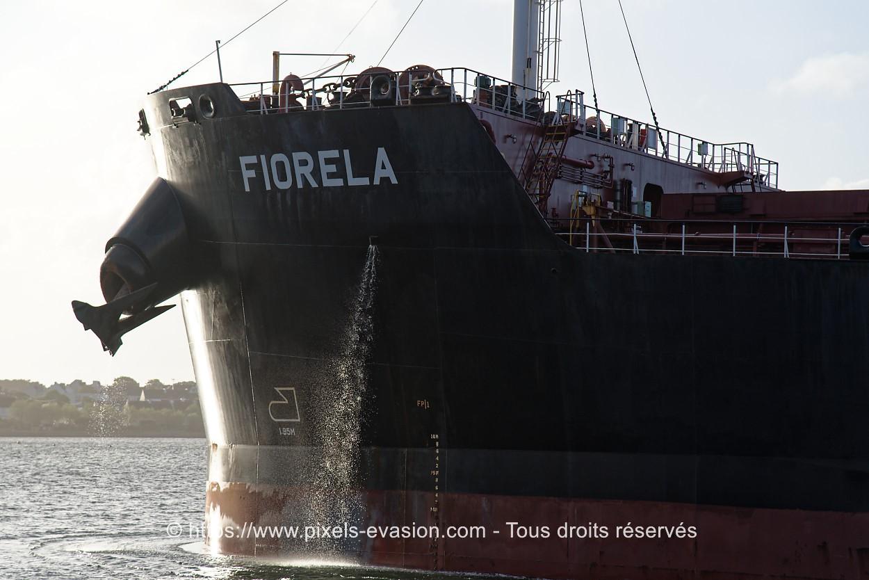 Fiorela (Monrovia)