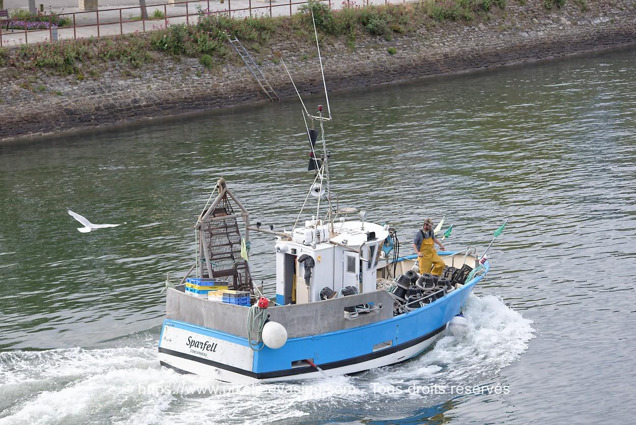 Sparfell CC 642401