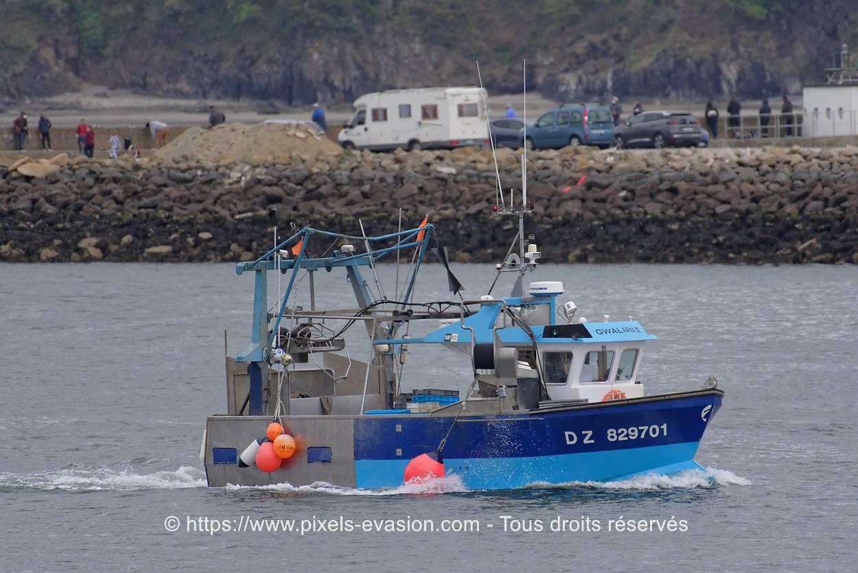 Gwalarn II DZ 829701
