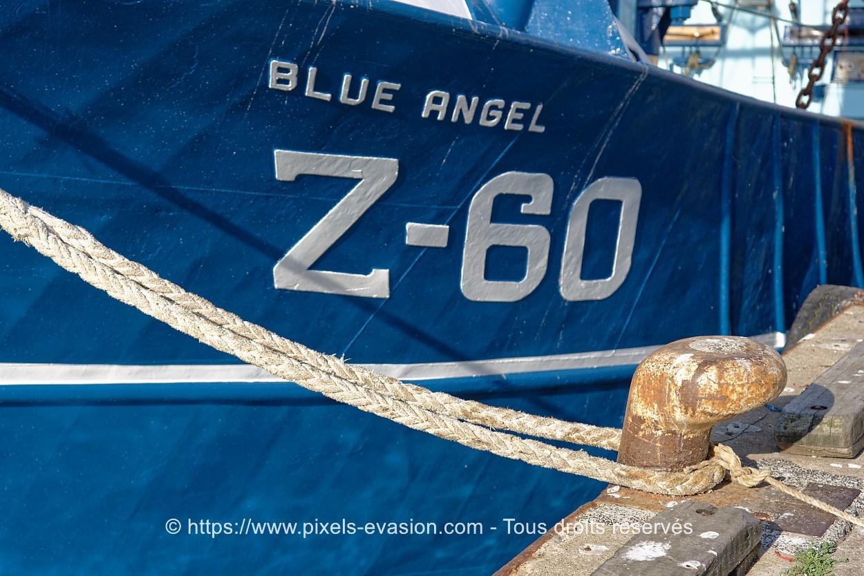 Z60 Blue Angel