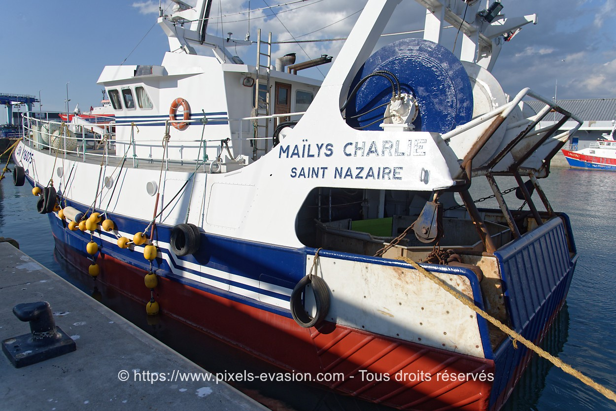 Mailys Charlie SN 916075