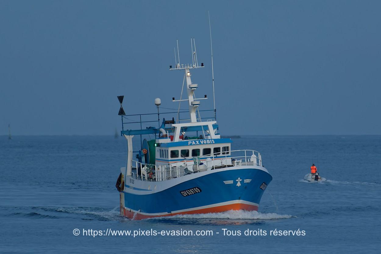 Pax Vobis GV 639709